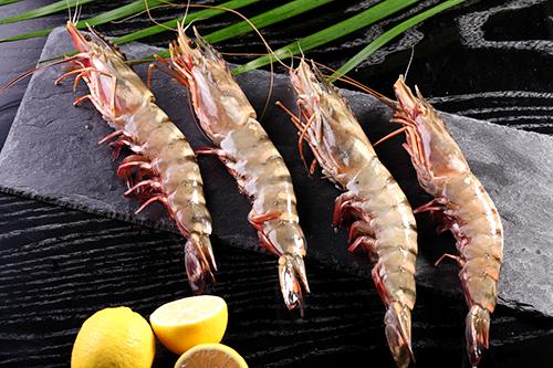 Tiefkühl-Seafood